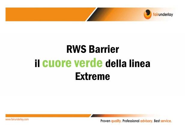 RWS IT-1